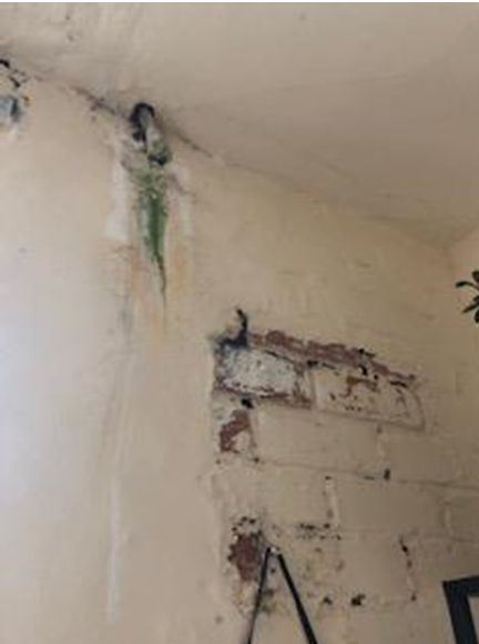 Social housing tenant living in a home with an excess of £30,000 worth of disrepair